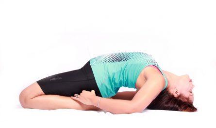 exercice-de-musculation